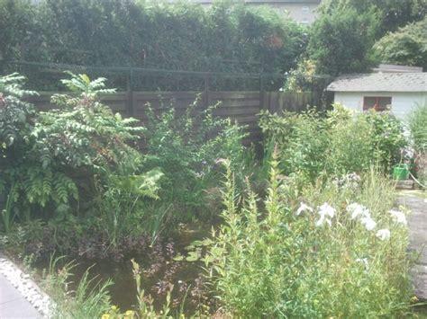 Katzennetz Fur Garten
