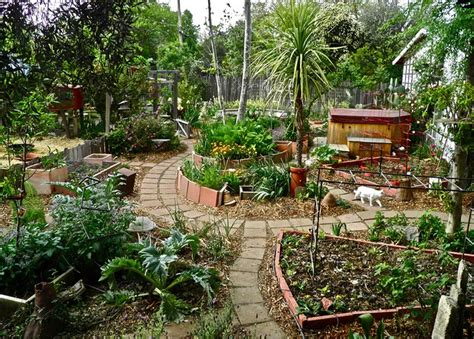 the quarter acre farm awesome garden layout