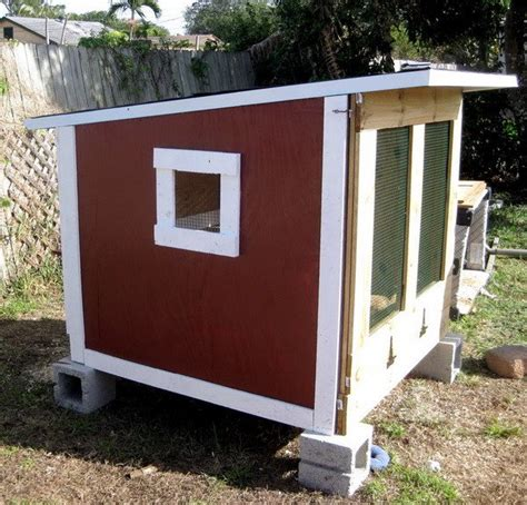 build backyard chicken coop chicken coop ideas designs and layouts for your backyard