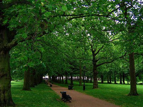 London's Green Park at Dusk   Flickr   Photo Sharing!