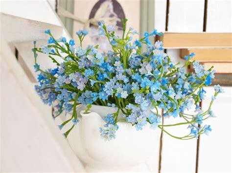 non ti scordar di me fiori coltivare i non ti scordar di me fiori in giardino