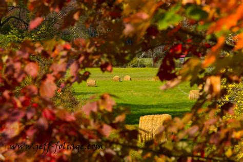 fall foliage in new england 2017 fall foliage report for 4 october 2017 new england fall