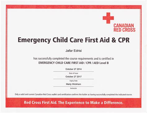 templates for first aid certificates about jana photography baby newborn photographers