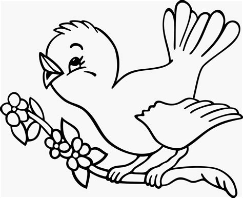 free coloring pages of little bird