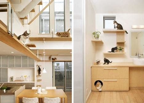 design works home is where the cat is pet purrrfect the ultimate cat friendly interior design