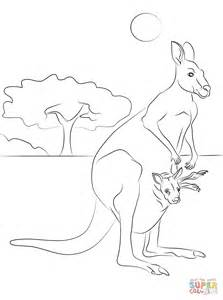 Red Kangaroo Coloring Page | coloring pages of red kangaroos coloring pages