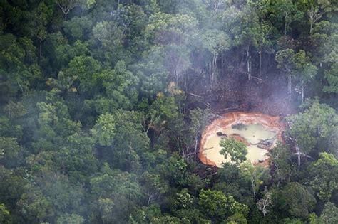 por una gentil floresta 8426374646 natureza em 9 pa 237 ses floresta amaz 244 nica perdeu 240 mil km 178 de 2000 a 2010