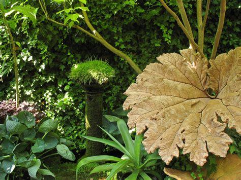 piante da mettere in giardino come coltivare piante da ombra in giardino