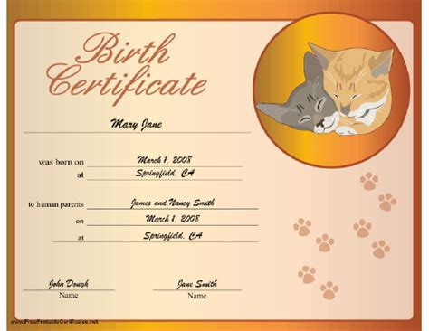 rabbit birth certificate template паспорт кошки