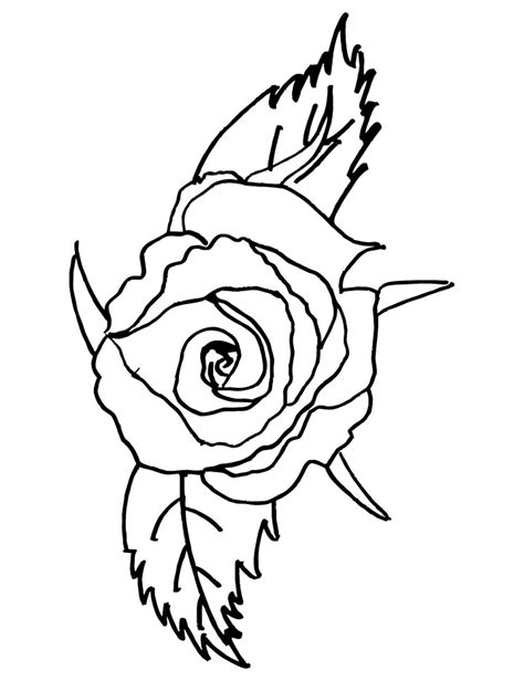 rose petal coloring page rose with two petals coloring page download free rose