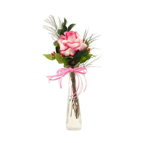 rosa in vaso rosa em vaso solit 225 120 a