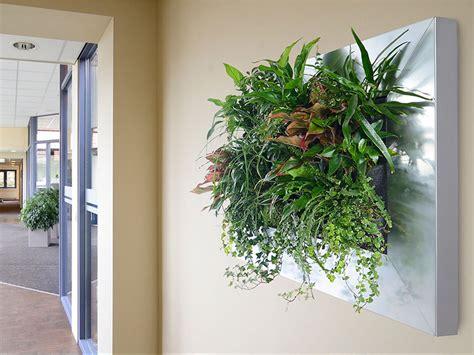 Pflanzenbild Selber Machen by Pflanzenbilder Hydroflora Kleinode Im Gr 252 Nen Kleid