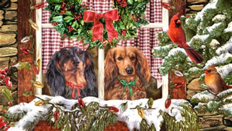 shop  cards dachshund long haired