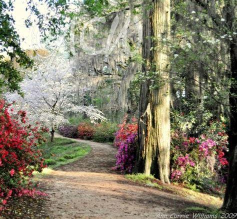 Edisto Memorial Gardens by Top 6 Places To Visit In Orangeburg Check Out Orangeburg