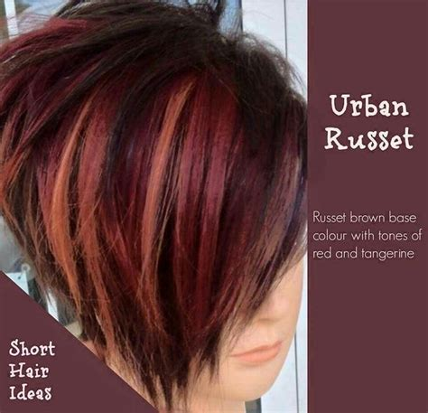 hair color techniques on pinterest hair cutting urban russet love this cute cut the color is a bit dark