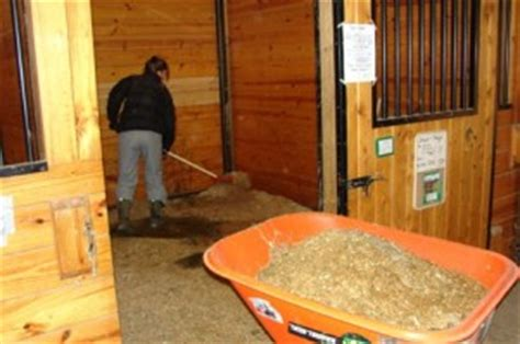 mucking stalls looking for a reason not to muck your stalls today