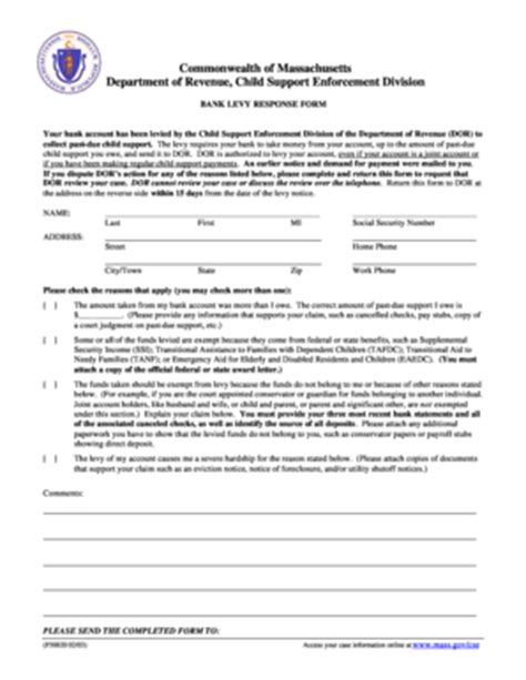 bank account levy fillable vlpnet bank levy response form