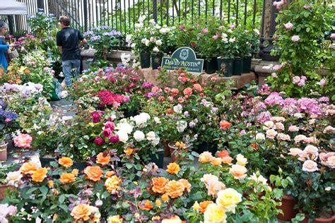 fiori torino fiori e terra aspettando il salone gusto mole24