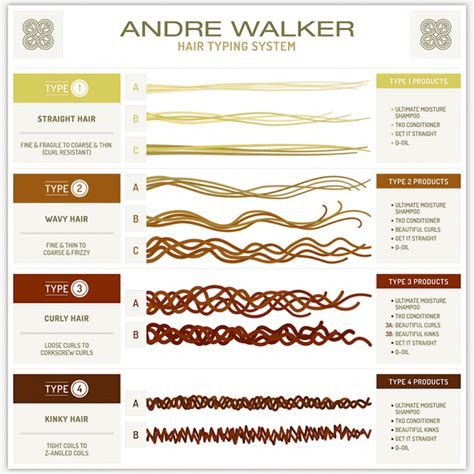 Andre Walker Hair Typing System the only guide you need for hair typing hair