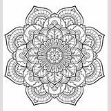Chameleon Blume | 650 x 690 jpeg 195kB