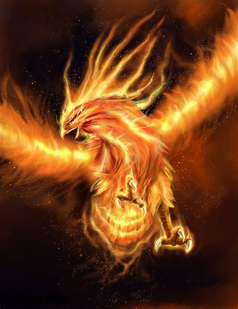 imagenes mitologicas fantasticas legend and mythological story of the phoenix