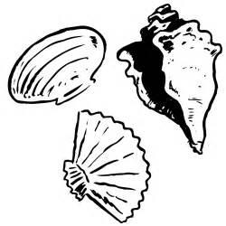 clip art seashells cliparts co