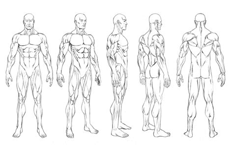 robert atkins art character turnarounds and figure