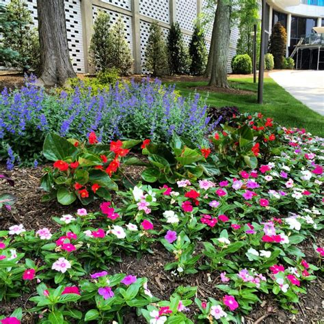 spring cleanup residential spring cleanup great tips on doing it right