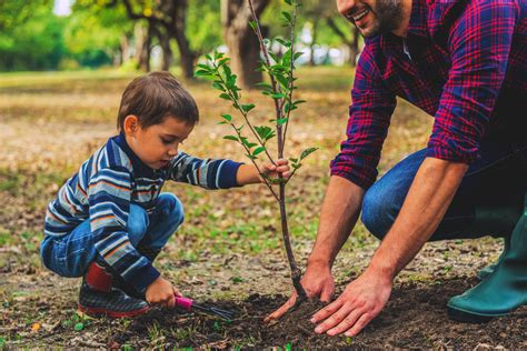 plant a tree plant a tree for earth day tiny hoppers