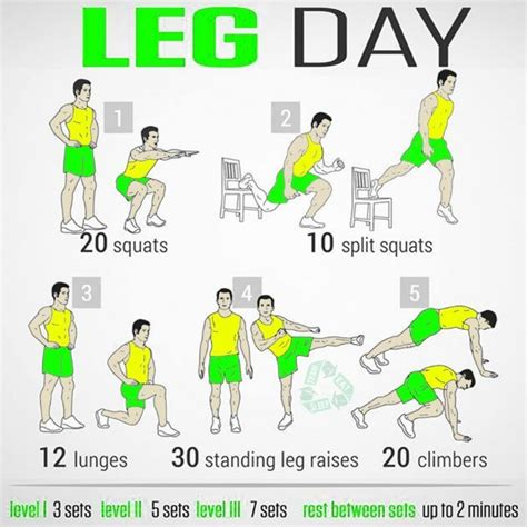 8 best leg workouts images on exercise