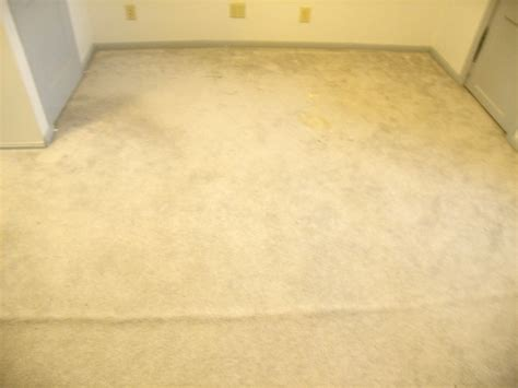 upholstery cleaning minneapolis carpet cleaning pictures rochester mn