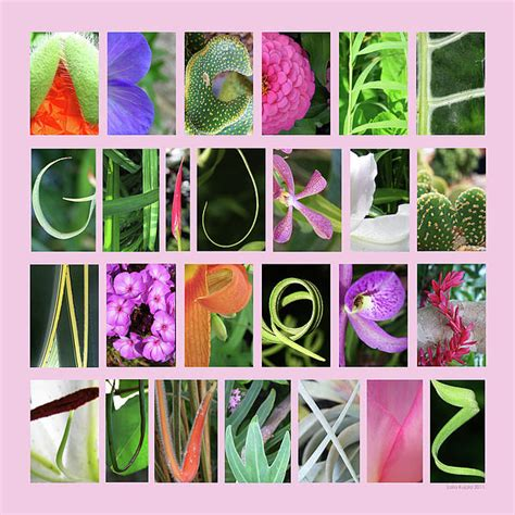 free printable nature alphabet letters photos of nature photos of nature letters