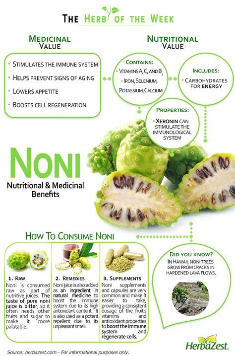 Noni Fruit Benefits Vitamin by Noni Herbazest