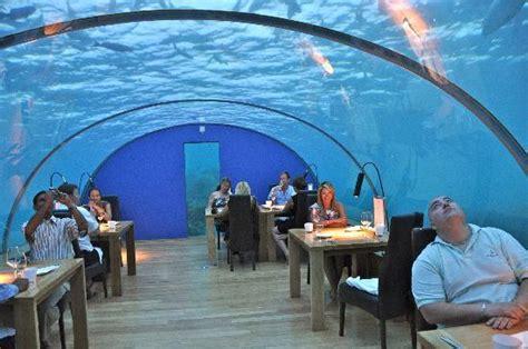 ithaa undersea restaurant prices rangali island picture of conrad maldives rangali island rangali island tripadvisor