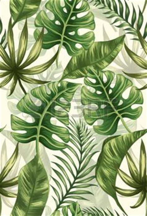 wallpaper daun palma m 225 s de 25 ideas incre 237 bles sobre hojas en pinterest mata
