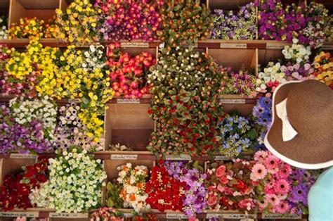 fiori finti roma fiori finti per bomboniere piante finte fiori per