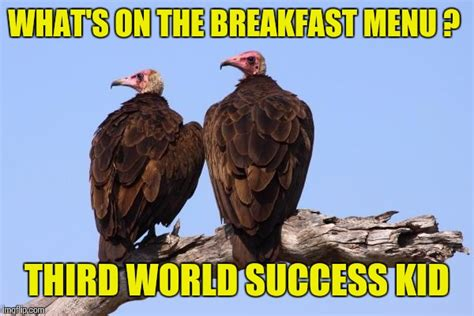 Third World Success Meme - third world success kid meme imgflip