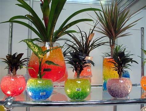 hidrogel  tanaman  berbagai keperluan lainnya