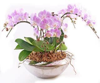 Hiasan Meja Kantor Tanaman Artificial Daun Mini Hijau toko bunga mawar jakarta barat florist indonesia