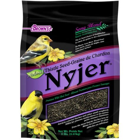 song blend 174 nyjer thistle seed f m brown s