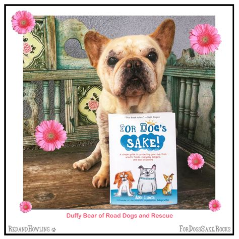 for dogs sake buy for s sake and a donation is made to adopt a pet 187 adoptapet