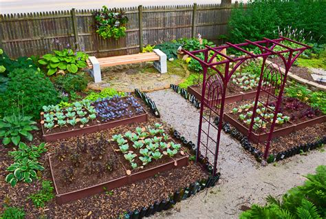 Shade Garden Design Technique Vegetable Color Blocking Veggie Garden Ideas