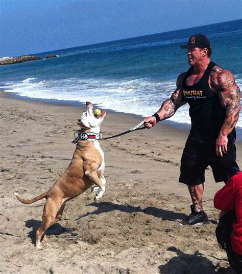 rich piana rich piana pinterest best 12 rich piana images on pinterest other see more