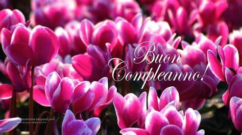 fiori di buon compleanno gratis fondale desktop con bellissimi fiori per augurare buon