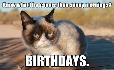 Grumpy Cat Birthday Meme - grumpy cat birthdays memes quickmeme