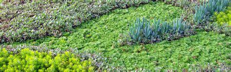 Mountain Crest Gardens by Garden Fling Mountain Crest Gardens Low Water