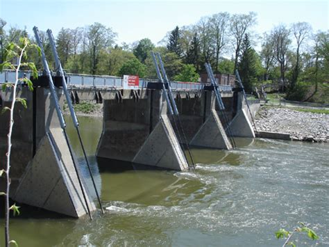 thames river ontario fishing fish movement at the springbank dam biotactic incorporated