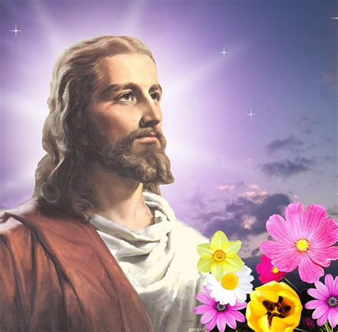 imagenes de jesus flores jesus imagens e fotos para facebook pinterest whatsapp