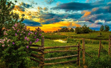 beautiful country farms farm at sunset wallpaper and background image