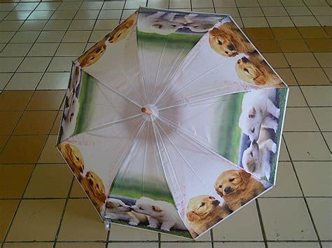 Hooper Jas Hujan Anjing Imut my bi nis jual payung gambar anjing